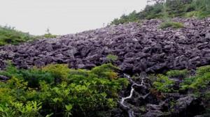 仙水峠手前の岩場