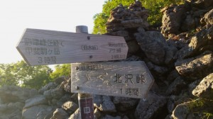 仙水峠の道標