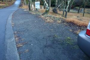桜森林公園駐車スペース